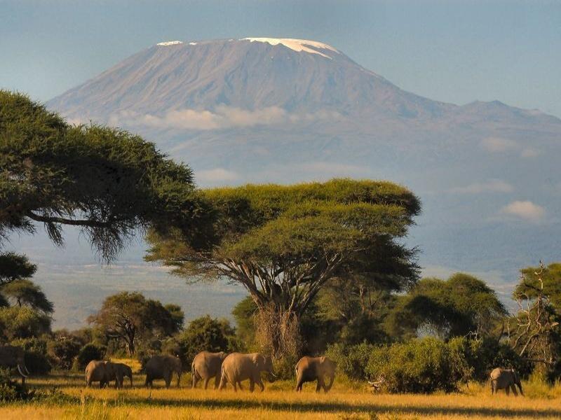 Кения 1